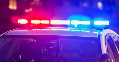 polis ışıkları